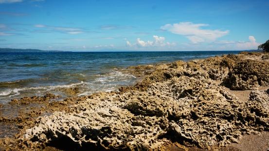 tandayag marine sanctuary
